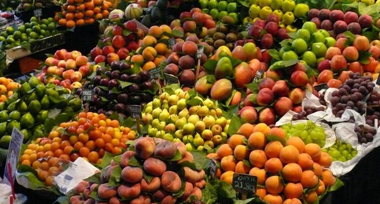 Existe una infinidad de alimentos que ayudan al organismo a protegerse y mantenerse sano y fuerte.