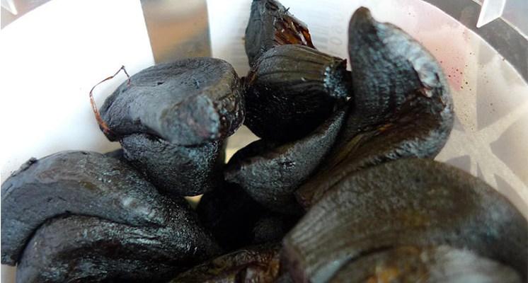 El ajo negro concentra 10 veces más las propiedades del ajo común.