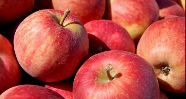 La sabiduría popular siempre le ha atribuido a la manzana virtudes benéficas para la salud.