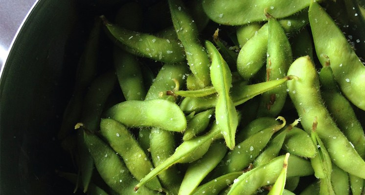 La soja es una legumbre muy nutritiva, que contiene un elevado porcentaje de proteínas.