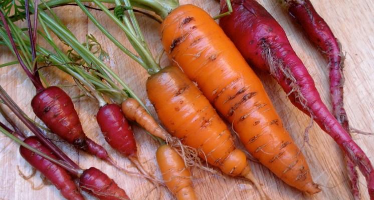 Los beta-carotenos son pigmentos de origen vegetal, y se pueden transformar en vitamina A