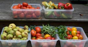 Aprender a utilizar los alimentos a favor de nuestra salud es un recurso vital para prevenir y combatir enfermedades