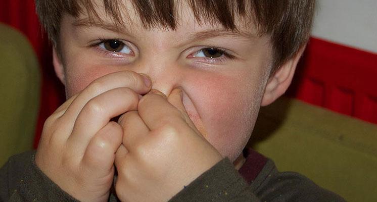 Algunos alimentos, como la fibra y la lactosa, pueden provocar gases con más facilidad.