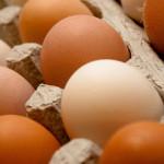 Las gallinas que producen estos huevos viven con libertad y en base a una buena alimentación, como los de antaño pero con más controles sanitarios.