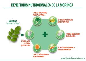 10 beneficios saludables de la Moringa | Alimentación Sana
