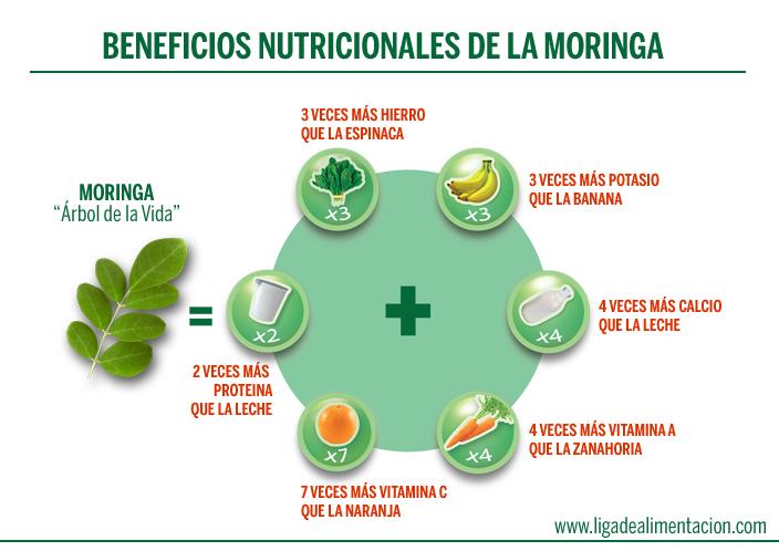 moringa-nutrientes